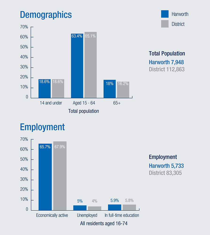 Demographics Infographic